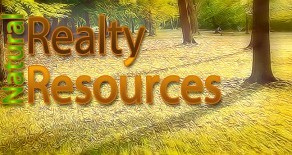 Realty Resources